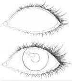 Рисовать поэтапно глаза – . | kakpravilno.info