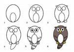 Нарисованные картинки с совами – 37 карточек в коллекции «Рисование совы поэтапно» пользователя Андрей в Яндекс.Коллекциях