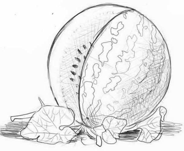 Арбуз рисунки карандашом – Как нарисовать арбуз карандашом ...