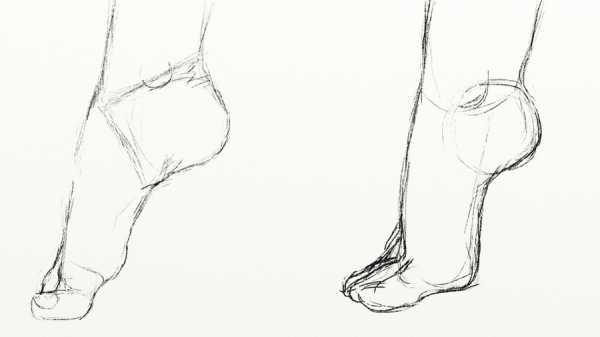 Поэтапное рисование одной из самых важных частей тела, руки человека, карандашом