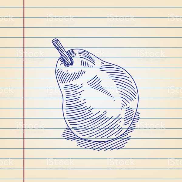 Картинки груша для детей нарисованные – Раскраска груша ...