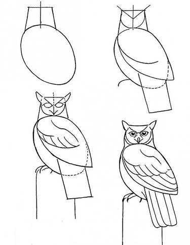 609d158e2de3 Нарисованные картинки с совами – 37 карточек в коллекции «Рисование ...