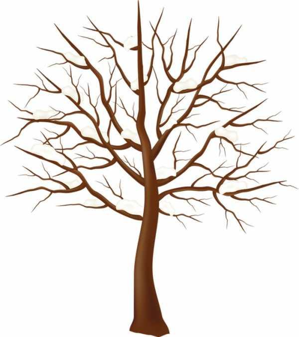 Рисунки деревьев детские – Ой!