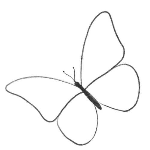 Как нарисовать бабочку шаблон