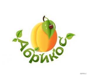Рисунок для детей абрикос – Раскраска Абрикос