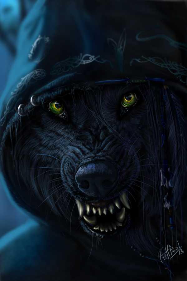 Рисунок картинка волк – Ой!